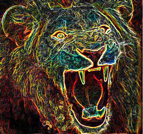 psychedeliclion